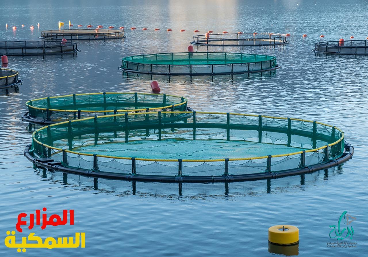 تعتبر مزارع الأسماك هي الشكل الرئيسي للزراعة المائية حيث تنطوي مزارع الأسماك على تربية الأسماك لأغراض تجارية في خزانات لأغراض الغذاء. حيث يتم في الغالب الإشارة إلى المكان التي يتم انتاج صغار الأسماك فيه بمفرخه الأسماك