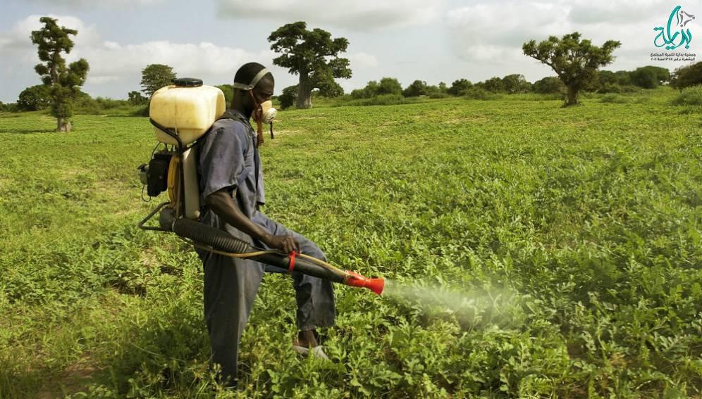 صوره تحتوى على رجل يحارب الافات الزراعيه بالرش عن طريق المبيدات
