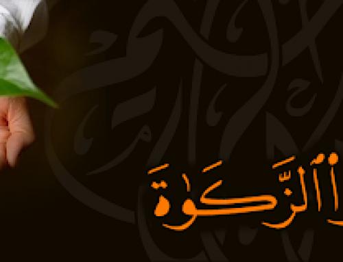 احكام الزكاه – و رد دار الفتوى على جواز تقسيطها