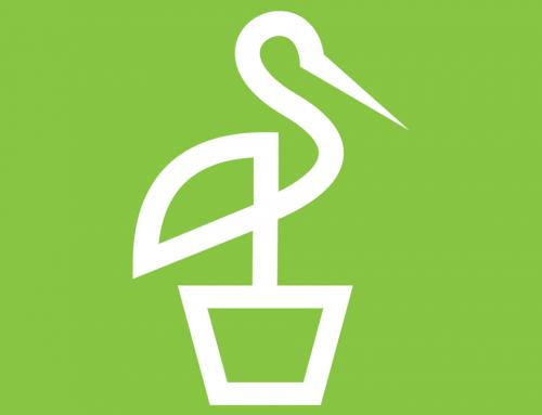بدايه – تطبيق شتله الزراعى اول تطبيق فى مصر لخدمه المزراعين